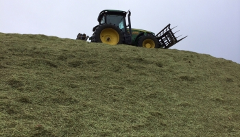 walling-contracting-services-gallery-silage-2