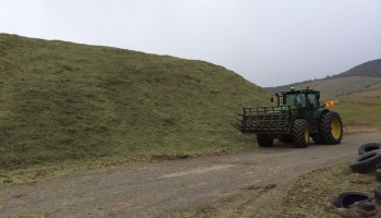 walling-contracting-services-gallery-silage-3
