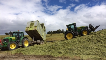walling-contracting-services-gallery-silage-5